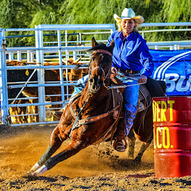 Barrel Racer by Joe Thomas - Animals Horses ( racing, horse, rodeo, cowgirl, barrell )