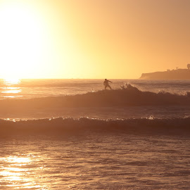 Half Moon Bay Surfer by Rob Taylor - Sports & Fitness Surfing ( surfing, surfer, waves, sunset, sillouette,  )