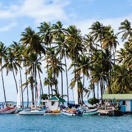 Marigot Bay by Matt Meyers - Landscapes Travel ( marigot bay, vacation, st lucia, travel, summit, sailboat, catamaran, cruise )