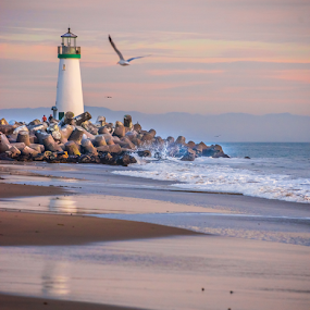 Lighthouse with sea gull by Kathy Dee - Buildings & Architecture Public & Historical ( california, lighthouse, sea, walton, ocean, beach, coastal, dusk, historic, coast, seagull, santa, cruz, twighlight, historical, beacon, surf, rocks,  )