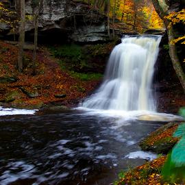 Sullivan Falls-1 by William Hamm - Landscapes Waterscapes ( water, william hamm, pa., waterfall, sullivan county )