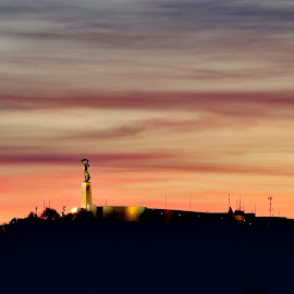 Statue pf Liberty, Budapest by Péter Mocsonoky - City,  Street & Park  Vistas ( hungary, hill, budapest, statue, red, dawn, sunset, light, dusk, attraction, sun )