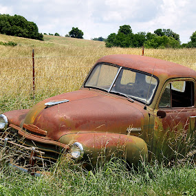 Chevrolet by Joel Mcafee - Transportation Automobiles ( old, truck, automobile, rusty, transportation )