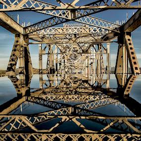 san rafael bridge reflected by Jamie Valladao - Buildings & Architecture Bridges & Suspended Structures ( reflection, structure, san rafael bridge, suspension, bridge )