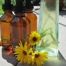 Calendula Tincture Topical and Internal