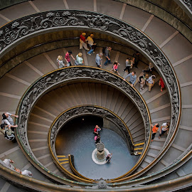 Spiral Stairs at the Vatican Museum by David Harris - Buildings & Architecture Architectural Detail