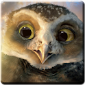Owl Guardians Live Wallpaper icon