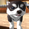 Game Dog Puppy Simulator 3D apk for kindle fire