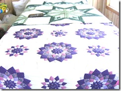 mennonite two quilts