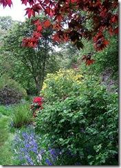 022 woodland