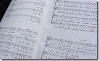 Gleann Bhaile Chaoil music