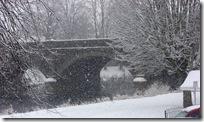 today's snow 004