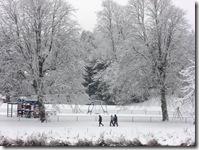 today's snow 010