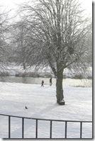 November snow 001