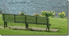 the bench and daffs tweed green