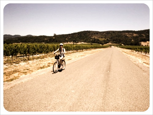 bike riding + wine tasting