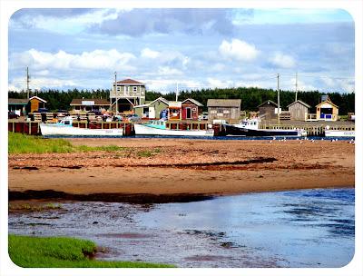 fishing town near lighthouse