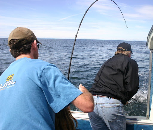 Panel recommends fishing ban off southern california coast for Surf fishing southern california