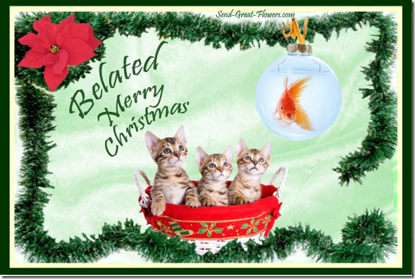 belated-cat-humor-christmas-ecard-lg