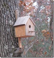 11 07 Birdhouse