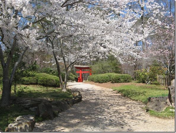 2010 spring 040