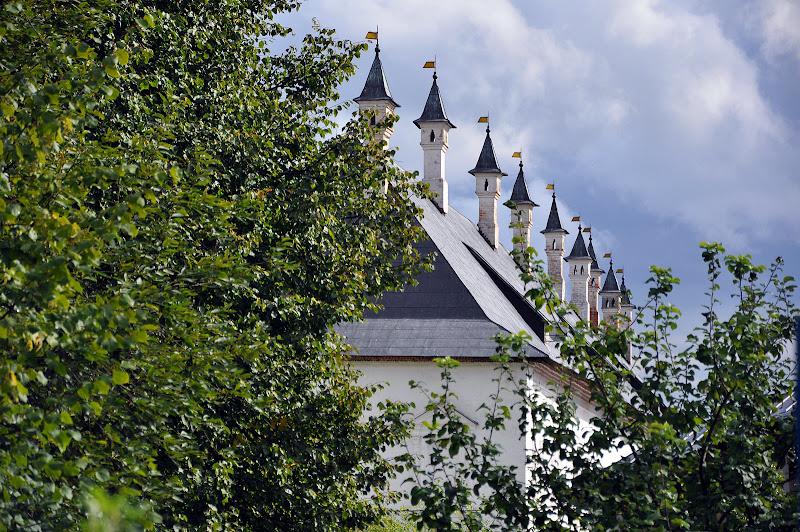 Крыша Саввино-Сторожевского монастыря в Звенигороде