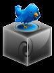 Twitter Oficial Carlota Rio