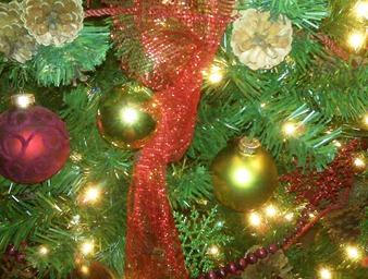 Christmas tree 2009 2
