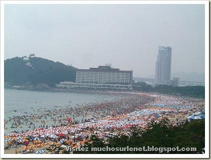 Une plage en Chine-3
