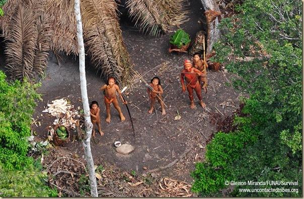 Les indiens isolés du Brésil