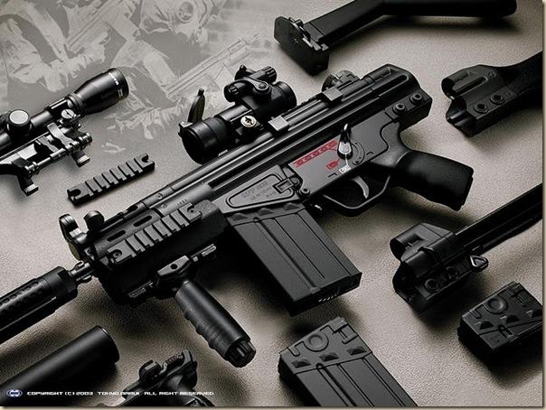 Armes (51)