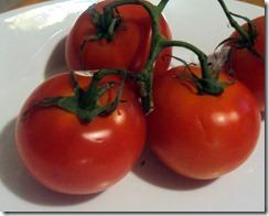 tomato still life vine