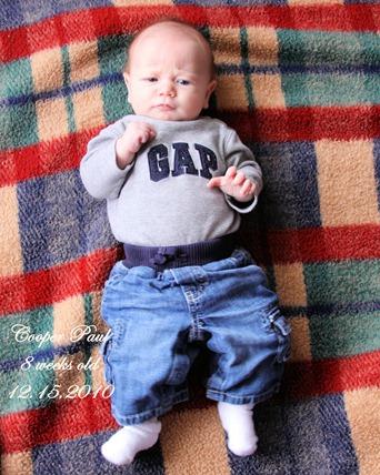 8 weeks old
