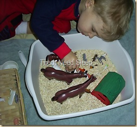 sensory tub with farm