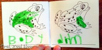 frog nomenclature 4