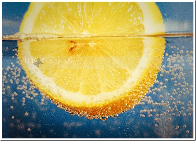 lemon-9