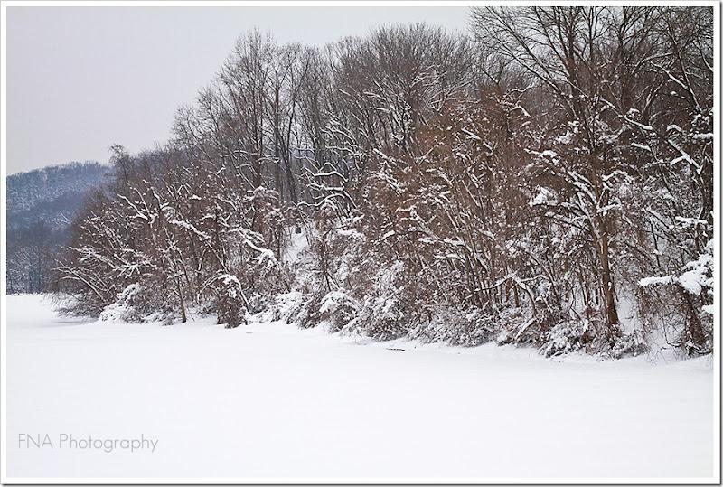 snowlake-3