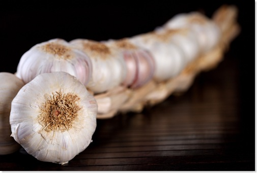 garlic5488