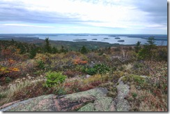 From the top of Cadillac Mountain in Acadia national park. You can see 3 cruise liners if you look carefully