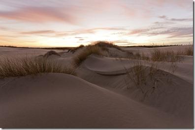 Sand Dunes in Oregon