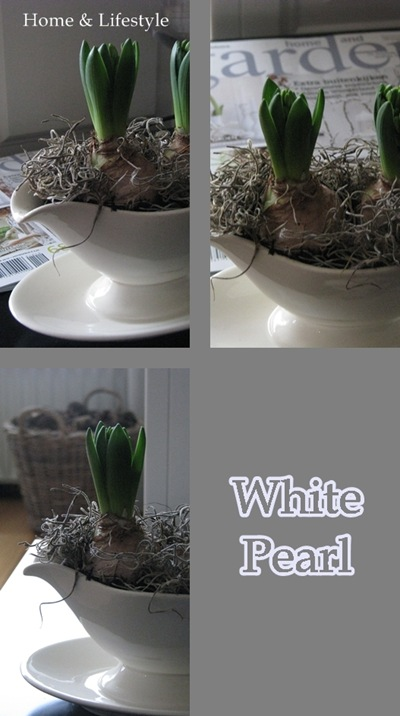 Collage White Pearl