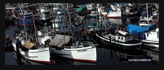 Ballard Boats
