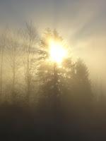 Knapp über dem Nebelmeer des Zugerbergs