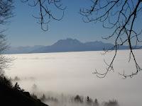 Ueber dem Nebelmeer auf dem Zugerberg
