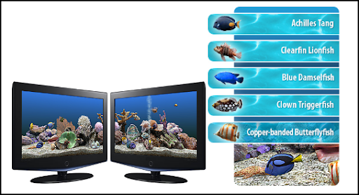 Marine Aquarium 3.0 Screensaver Full Version for FREE