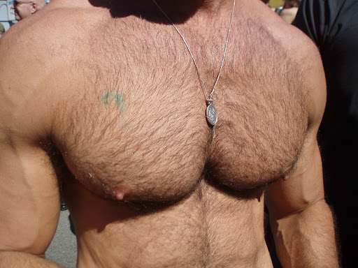 Hairy Muscle Men