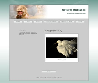 www.willilaufmann.com