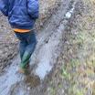 De Winterwandeling 002.jpg