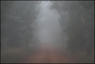 fog_phil belbin
