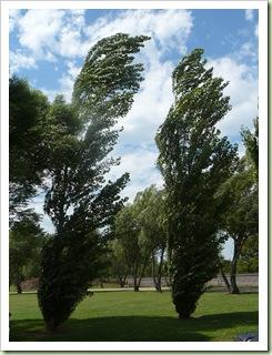 Kansas wind